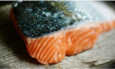 Farmed Salmon is a toxic food