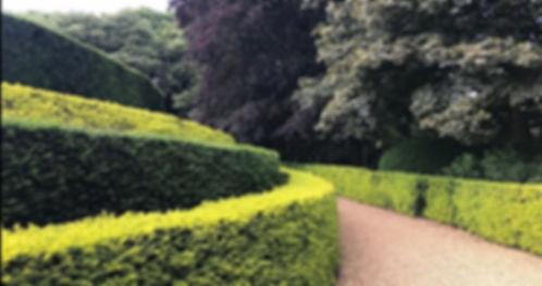 The Rothschilds Ascott House gardens - t