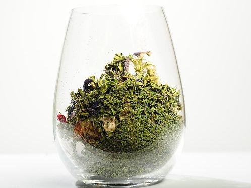 American Ginseng Lingzhi Cleanser Detox Tea