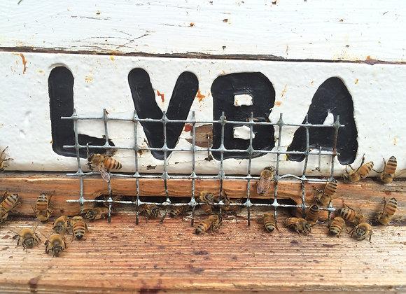 LVBA 2021 Membership
