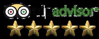 5-stars-on-Tripadvisor.png