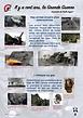 5- Des armes encore plus destructrices.p
