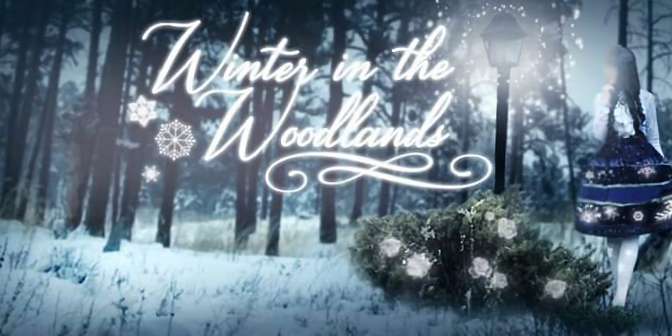 Winter in the Woodlands
