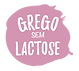iogurte grego natural yonest everywhere individual com colher sem lactose