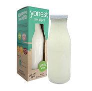 smoothie natural iogurte batido para beber