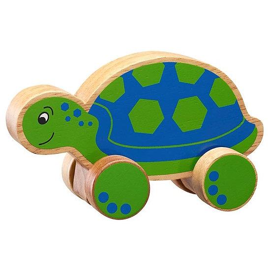 Turtle Push Along