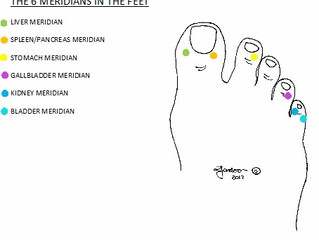 Introduction to the Meridians of the Body