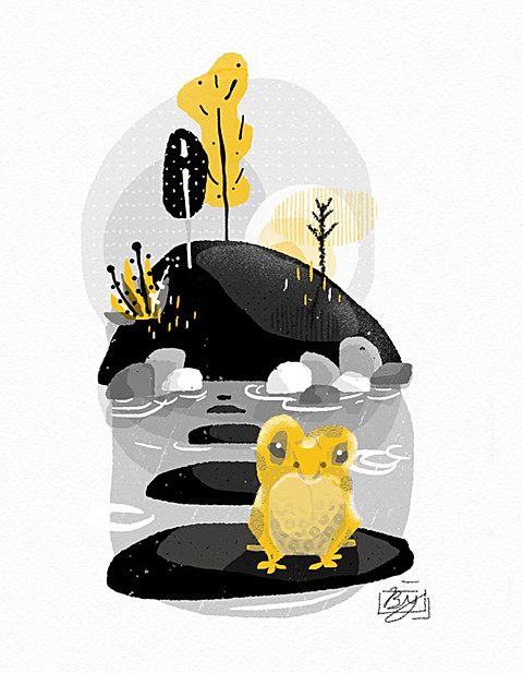 Golden Morning Frog