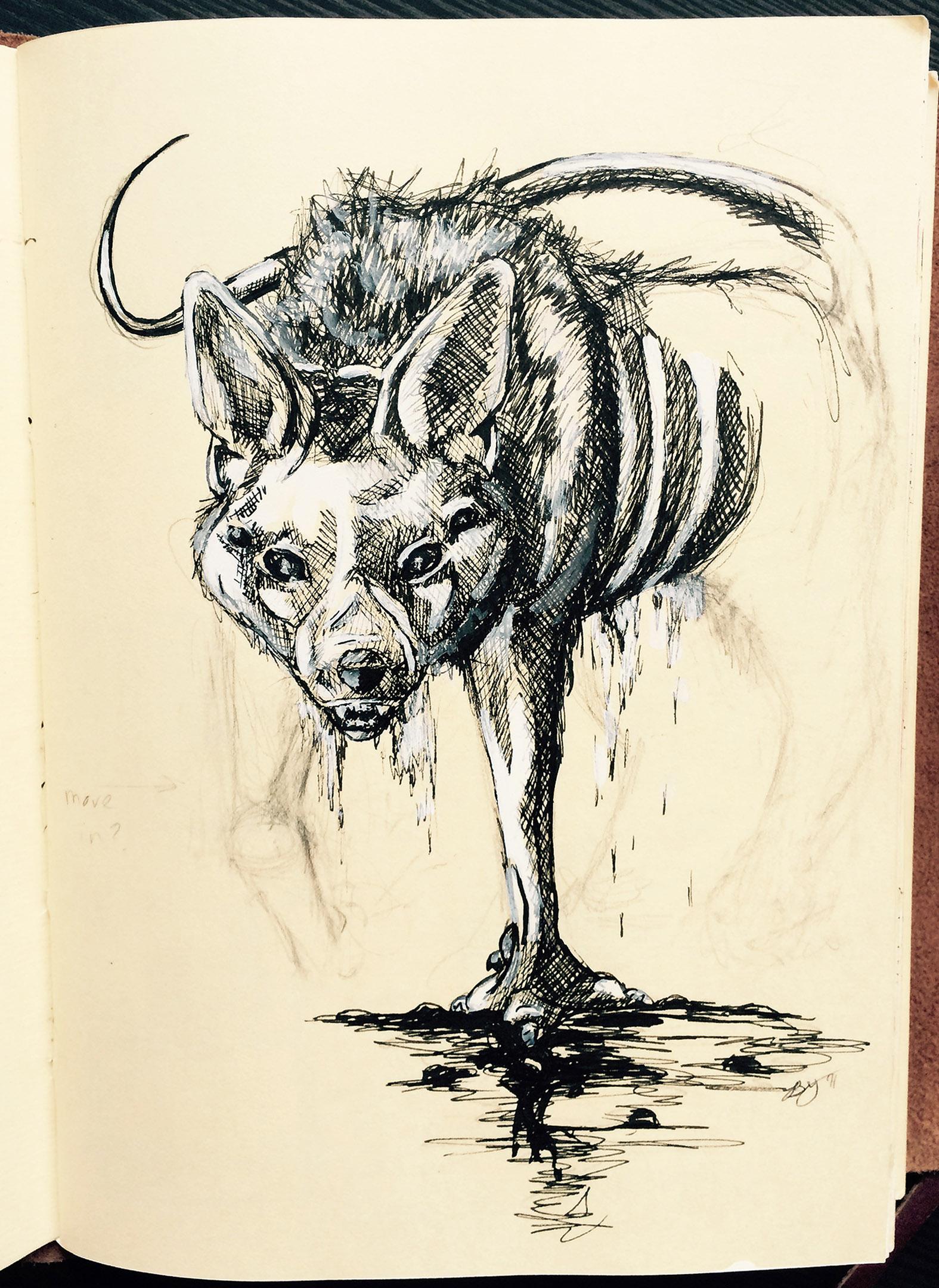 Jackal Creature