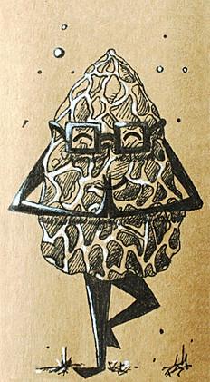 Namaste-Morel-Mushroom.jpg