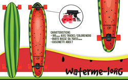 Longboard Customizzato 1