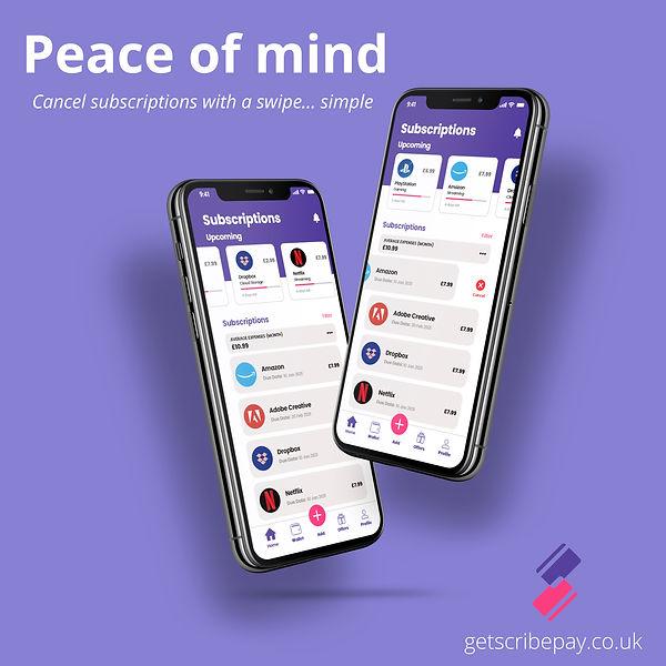 ScribePay-Peace of mind.jpg