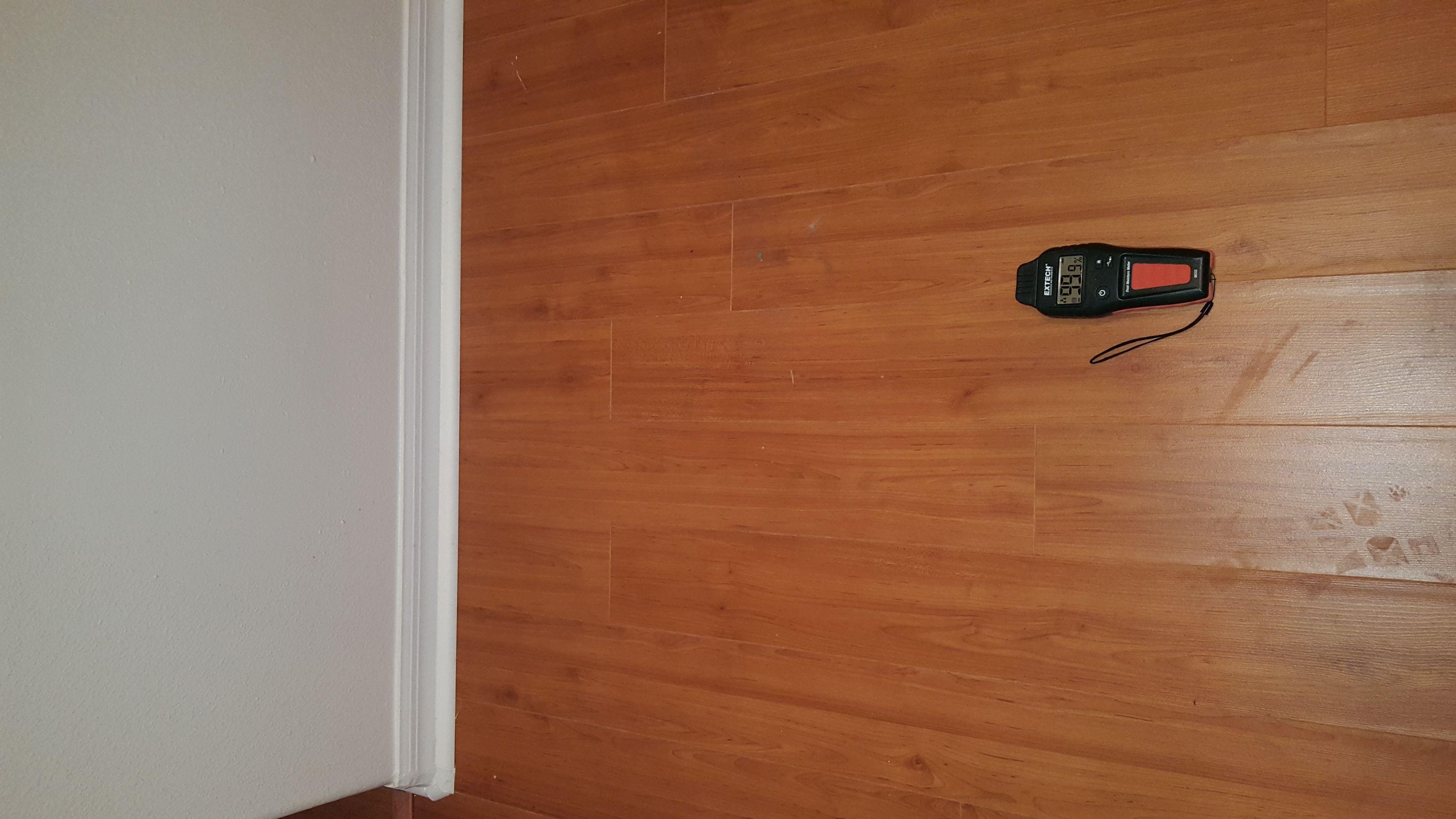 Kitchen wet floor leak detection