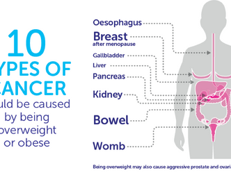Overweight and its connection to cancer