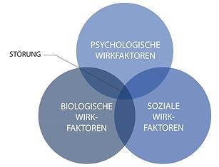 BioPsychoSoz Modell.png