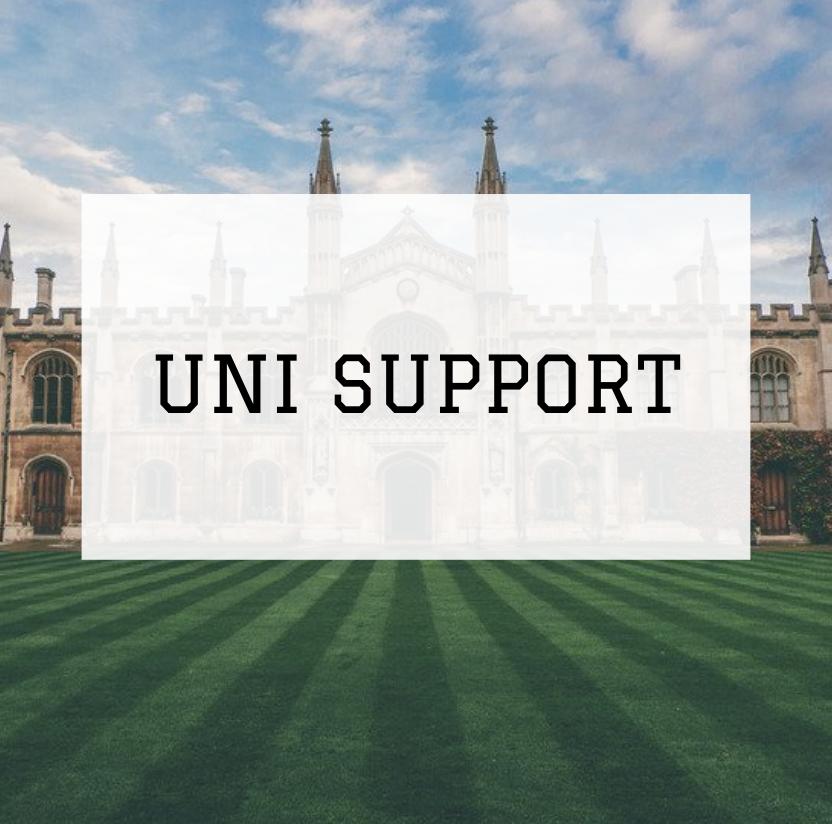 Undergraduate Support -Free consultation