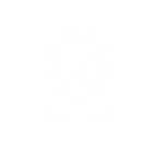 ICON4-05.png