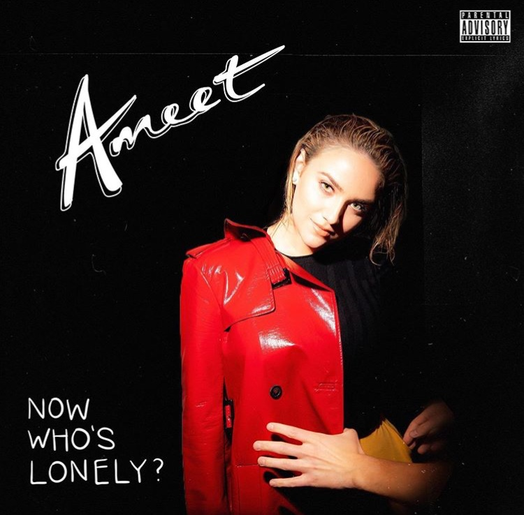 Ameet - Now Who's Lonely