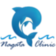 logo_Dolphin.png