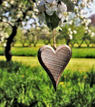 Naturzauber-Herz