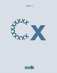 calix-foto-catalogoXL.jpg