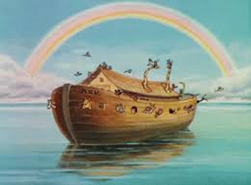 noah rainbow.png