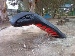 Black Snake. 1
