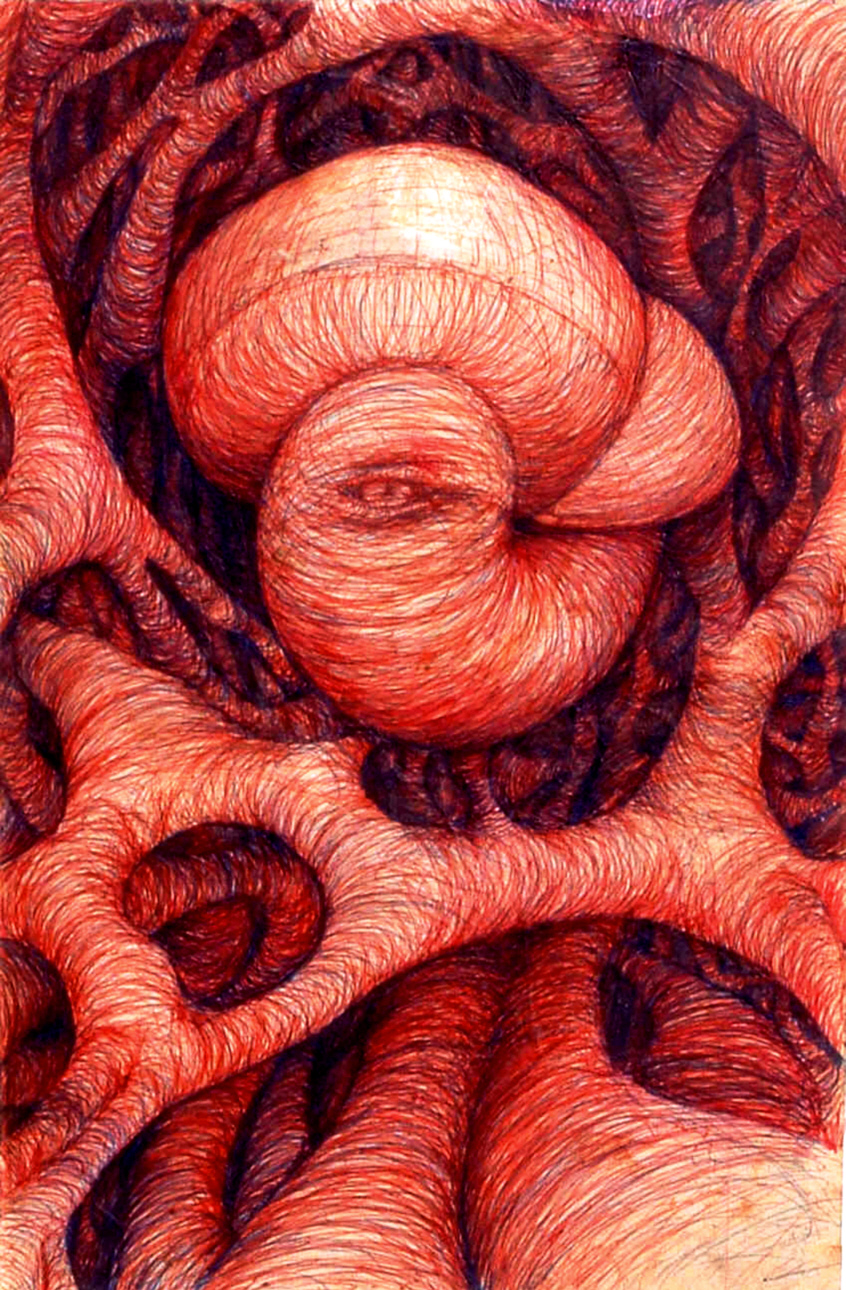 The+Mushroom1+net.jpg