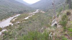 Snowy River Deddick Reach II