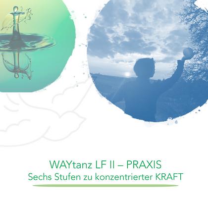 WAYducation - Lebensfeld 2