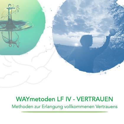 WAYducation - Lebensfeld 4