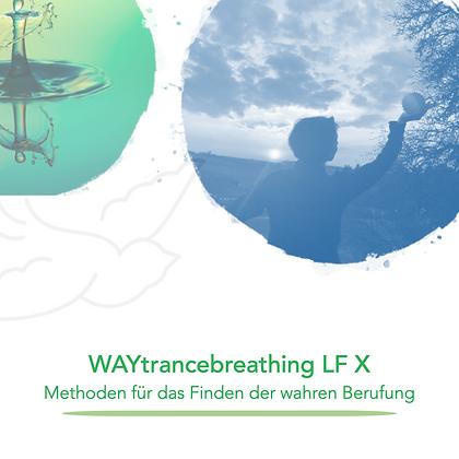 WAYducation - Lebensfeld 10