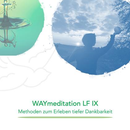 WAYducation - Lebensfeld 9