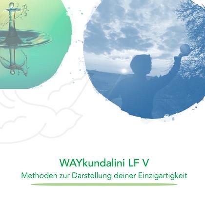 WAYducation - Lebensfeld 5