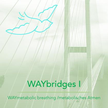 WAYbridges I - WAYmetabolic