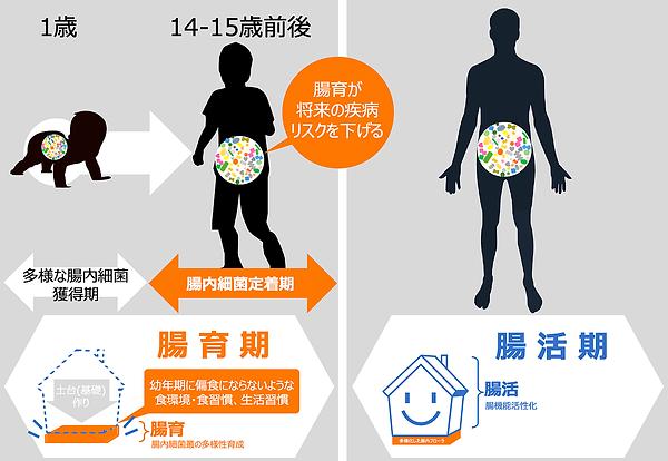 腸育腸活スクールスマートフード 腸育期腸活期