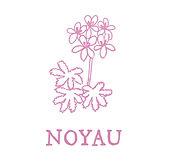 北陸・中部愛知県認定教室NOYAU