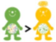 腸育腸活スクールスマートフード腸内フローラの多様性