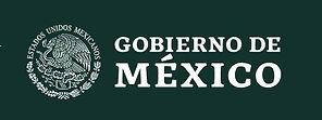 MX logo.jpg