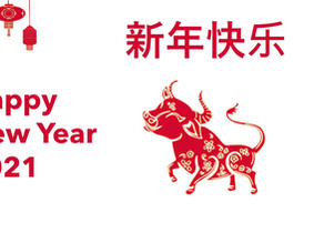 Happy Chinese New Year From Vilden Associates!