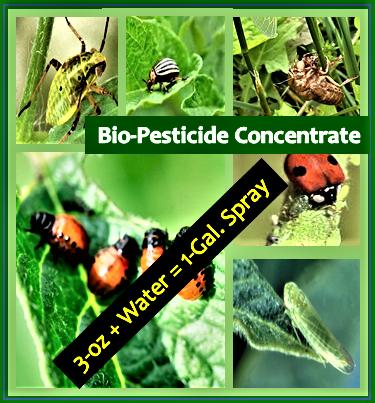 Bio-Pesticide Concentrate