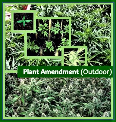 Plant Amendment (Outdoor)