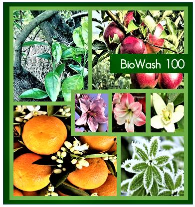 BioWash 100