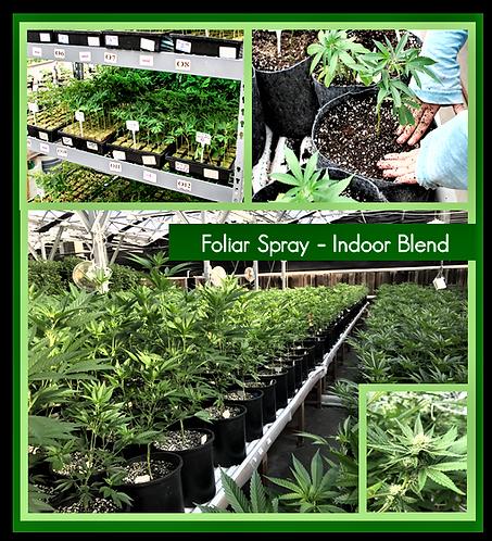 GreenSafe Foliar Spray (Indoor Blend)