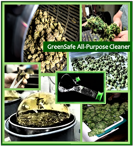 GreenSafe All-Purpose Cleaner