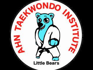 Ahn Taekwondo Daycare satellite programs