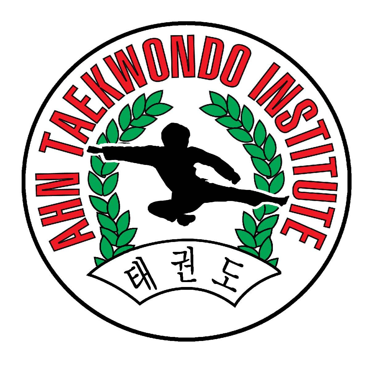 Taekwondo Introduction Classes