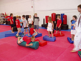 Ahn Martial Arts Birthday Parties!