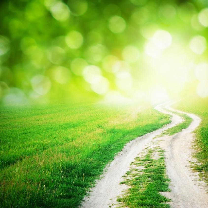 Energy Meditation Fundamentals - 4-part series