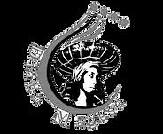 Diana Magesa Logo